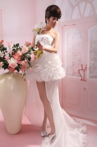 White One Shoulder Ruffled Organza Celebrity Dress with Watteau Train and Sequins
