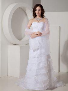 Fashionable Sheath Sweetheart Wedding Dress in Organza with Appliques