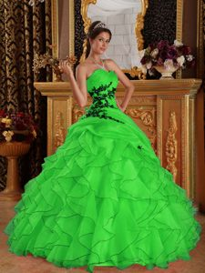 Green Ball Gown Sweetheart Organza Quinceanera Dresses with Ruffles
