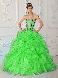 Special Ball Gown Organza Ruffled Dresses for Quince in Spring Green