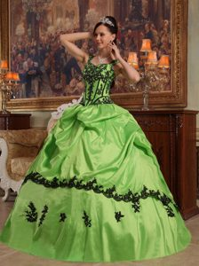 Spring Green Appliqued Dresses for Quince Best Seller Nowadays