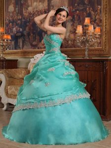 Aqua Blue Ball Gown Organza Quinceanera Dress with Appliques for Less