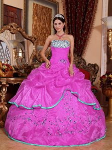Hot Pink Ball Gown Strapless Organza Quinceanera Dress with Appliques