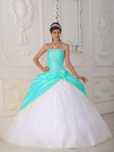 Special Ball Gown Appliqued Quinceanera Dress in Organza and
