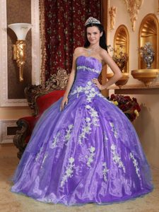 Beautiful Ball Gown Strapless Dress for Quince in Organza with Appliques