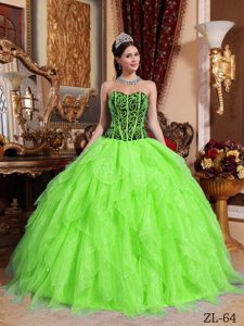 Spring Green Sweetheart Ball Gown Appliqued Dresses for Quince with Layers