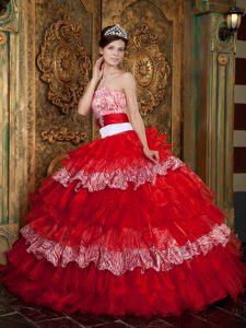 Zebra and Wine Red Organza Quinceanera Dress with Layered Ruffles for Cheap