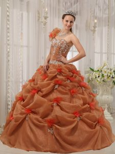 One Shoulder Rust Red Organza Sweet 16 Dresses with Pick-ups and Appliques