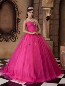 Hot Pink Sweetheart Organza Quinceanera Dresses with Appliques and Beading