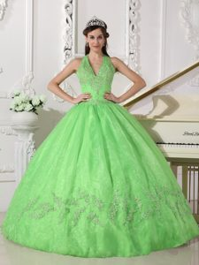 Pretty V-neck Halter Spring Green Organza Quinceanera Dress with Appliques