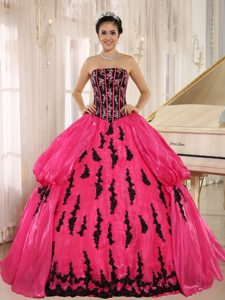 Hot Pink 2013 New Arrival Strapless Embroidery Decorated Quinceanera Dress