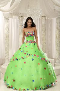 Beautiful Green Quninceanera Gown Dresses with Appliques on Wholesale Price