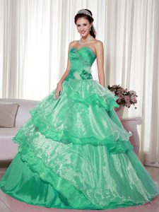 Green and Organza Quinceanera Dress with Beading and Hand Made Flower