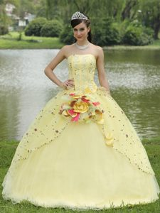 Light Yellow Quinceanera Dress with Appliques and on Sale