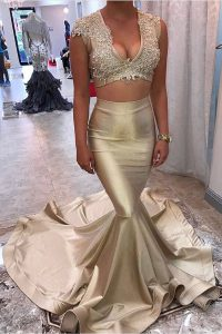 Decent Mermaid Champagne Satin Zipper V-neck Sleeveless Prom Evening Gown Court Train Appliques