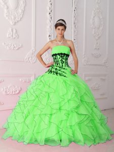 Spring Green Strapless Organza Quinceanera Dress with Ruffles and Appliques