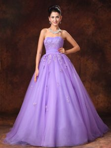 Lilac Sweetheart Tulle Senior Wedding Dress with Court Train on Promotion